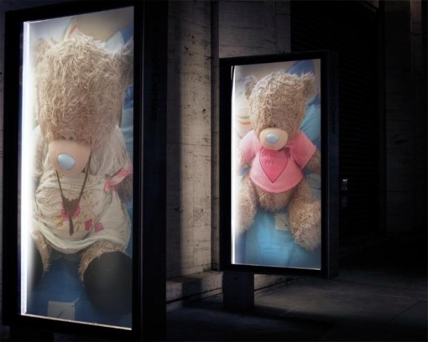 cáo Teddy